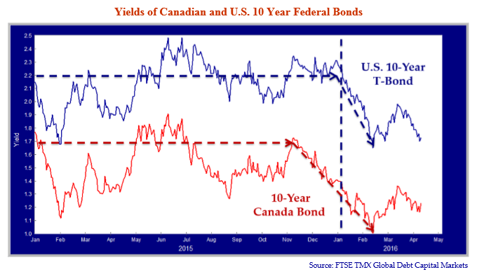 """Graph shows Yields of Canadian and U.S 10 Year Federal Bonds. Graph source is FTSE TMX Global Debt Capital Markets. The Y axis is Yield 1.0 - 2.5. The X axis is Jan 2015 to May 2016, monthly. There are two lines: the blue line is """"U.S 10 Year T-Bond"""" and the red line is """"10 Year Canada Bond."""" The trends for both lines are the same - a horizontal trend line that trends downwards in Nov 2015 for the red line, and Jan 2016 for the blue line."""