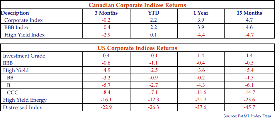 The table shows the Canadian and United States corporate indices returns.